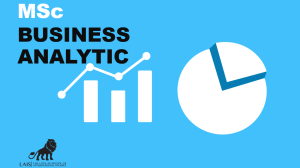 MSc Business Analytic