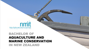 Aquaculture and Marine Conservation at NMIT